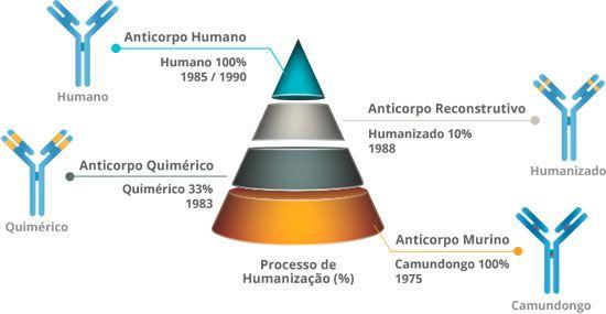 Ensaios clínicos em andamento com Anticorpos Monoclonais conduzidos pela Agenus, parceira da ReceptaBio.