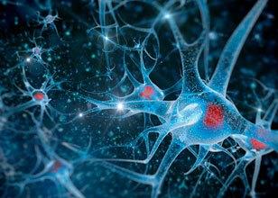 Medicamento biossimilar: anticorpos monoclonais são desenvolvidos para combater doenças autoimunes, cânceres e infecções.